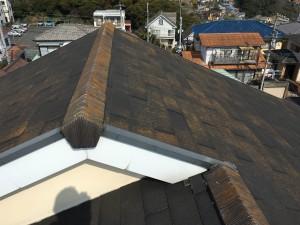 コロニアル屋根のカビコケ