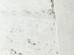 石膏パネルボードの腐食