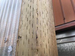 加圧注入された杉の柱
